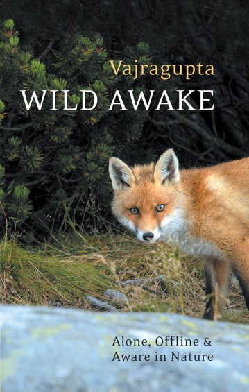 wild-awake-cover-final